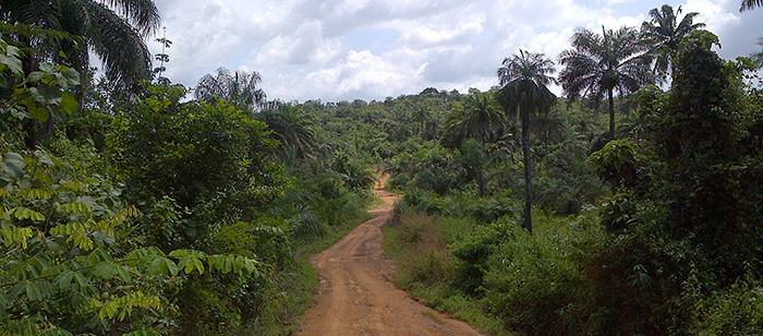 Roads were muddy, and cell phone reception, running water and electricity are limited in rural Liberia. (Photo by Hannah Kirking.)