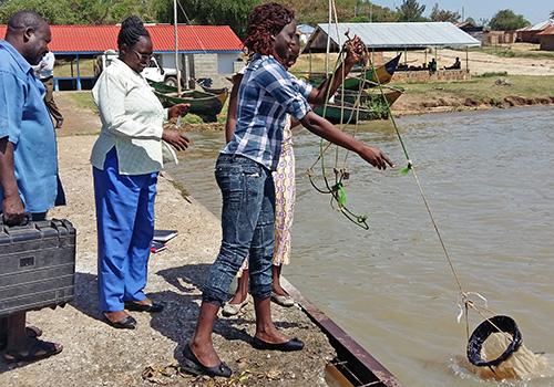 Women drawing net from water