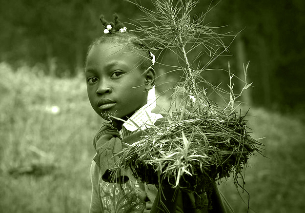 A young girl carries her seedling to where it will be planted.